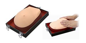 Photo: Visual-Tactile Breast Examination Model
